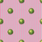 Vattenmelon på bordduken Royaltyfri Illustrationer