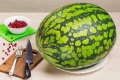 Vattenmelon på en vit platta, röda bärtranbär på träbakgrund, kniv, gaffel, grönt torkdukebräde för att förbereda sig Royaltyfri Fotografi