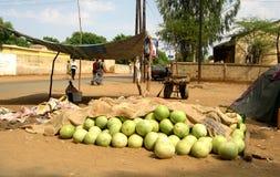 Vattenmelon på försäljning Royaltyfri Bild