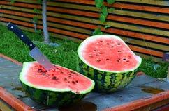 Vattenmelon på picknicken Royaltyfri Bild