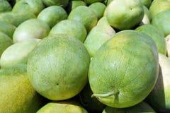Vattenmelon på skärm i den Rarotonga marknadskocken Islands Royaltyfria Bilder