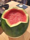 Vattenmelon Soju royaltyfri fotografi