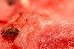 Vattenmelon som bakgrund close Fotografering för Bildbyråer