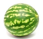 Vattenmelon som isoleras på en white arkivbilder