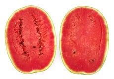 Vattenmelon som isoleras på vitbakgrund Arkivbilder