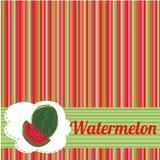 Vattenmelonbakgrund Royaltyfri Bild