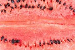 Vattenmelonbakgrund Royaltyfria Foton