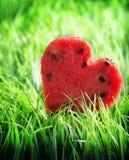 Vattenmelonhjärta på grönt gräs royaltyfria foton