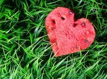 Vattenmelonhjärta på grönt gräs royaltyfria bilder