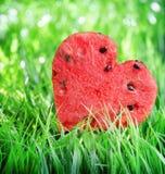 Vattenmelonhjärta på grönt gräs Arkivbilder
