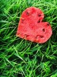Vattenmelonhjärta på grönt gräs begreppshjärta över rose valentinwhite för red royaltyfria bilder