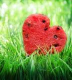 Vattenmelonhjärta på grönt gräs. Valentinbegrepp fotografering för bildbyråer