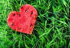 Vattenmelonhjärta på grönt gräs. Valentinbegrepp royaltyfria bilder