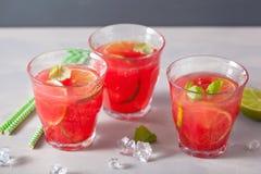 Vattenmelonlemonad med limefrukt och mintkaramellen, uppfriskande drink för sommar royaltyfria bilder
