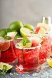 Vattenmelonmargarita med limefrukter Royaltyfri Fotografi