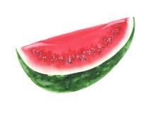 Vattenmelonqartervattenfärg Arkivbilder
