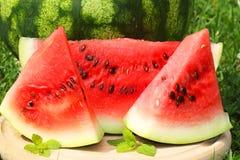 Vattenmelonskivor Arkivfoton