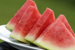 vattenmelonwedges royaltyfri foto