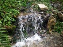 Vattennedgång eller droppe Royaltyfri Bild