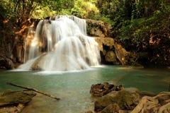 Vattennedgång i skog arkivfoton
