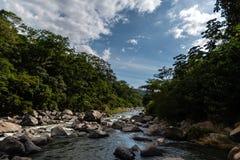 Vattennedgång i skog i guatemalanska berg arkivbilder