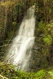 Vattennedgång på den Luxulyan dalen Fotografering för Bildbyråer