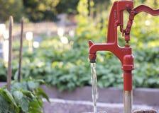 Vattenpump i trädgård royaltyfria foton