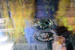 Vattenreflexion och vattendroppe Fotografering för Bildbyråer
