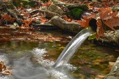 Vattenresurser och naturalness i natur royaltyfri fotografi