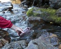 Vattensamling för kemisk provning royaltyfri fotografi