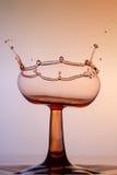 Vattenskulptur - ett exponeringsglas av rött vin Arkivfoton