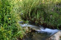 VattenslingaChelva flod Fotografering för Bildbyråer