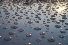 Vattensmå droppar på metall som reflekterar solen royaltyfri bild