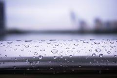 Vattensmå droppar på staketen arkivfoton