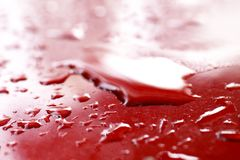 Vattensmå droppar som är våta på röd bil` s, ytbehandlar huven, bevattnar droppe på röd textur, fokus för våt närbild för vattend royaltyfri fotografi