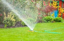 Vattenspridare som besprutar vatten över grönt gräs i trädgården Arkivfoto