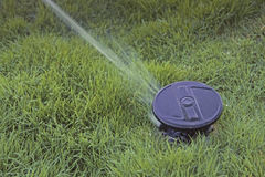 Vattenspridare som besprutar vatten Fotografering för Bildbyråer