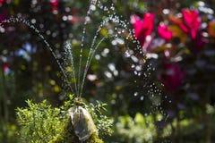 Vattenspringbrunn Arkivbilder