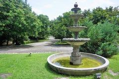 Vattenspringbrunn i en enorm gräsplanträdgård royaltyfria bilder