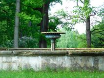 Vattenspringbrunn i parkera i vår Arkivfoto