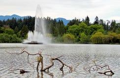 Vattenspringbrunn på sjön Arkivfoton