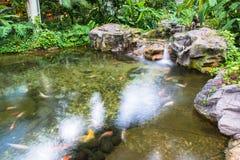 Vattenspringbrunnen i trädgård eller parkerar Royaltyfri Bild
