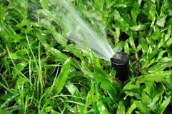 Vattenstänk Royaltyfria Bilder