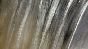 Vattenstekflott från vagga med ljudet stock video