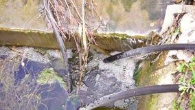 Vattenstråle som flödar till jordningen från en manuell vattenpump, nära en vattenbrunn lager videofilmer
