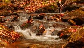 Vattenström i bergen Arkivbild