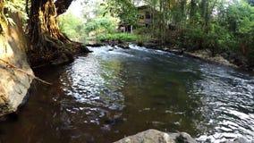 Vattenströmmen som över flödar, vaggar längs den lilla floden, solljus som shinning utöver ett hus i träbakgrund stock video