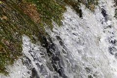 Vattensuddighet Arkivfoton