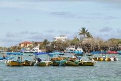 Vattentaxi i Puerto Ayora, Santa Cruz Arkivbilder