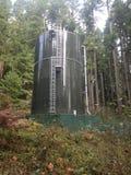 Vattentorn ut i mitt av träden fotografering för bildbyråer